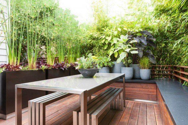 Les 20 meilleures id es de la cat gorie brise vue terrasse sur pinterest - Amenagement petit jardin bambou calais ...