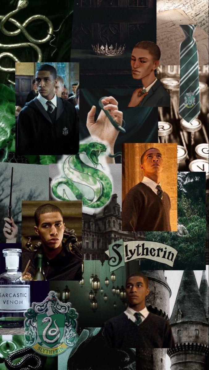 Blaise Zabini Wallpaper Harry Potter Images Harry Potter Aesthetic Harry Potter Obsession