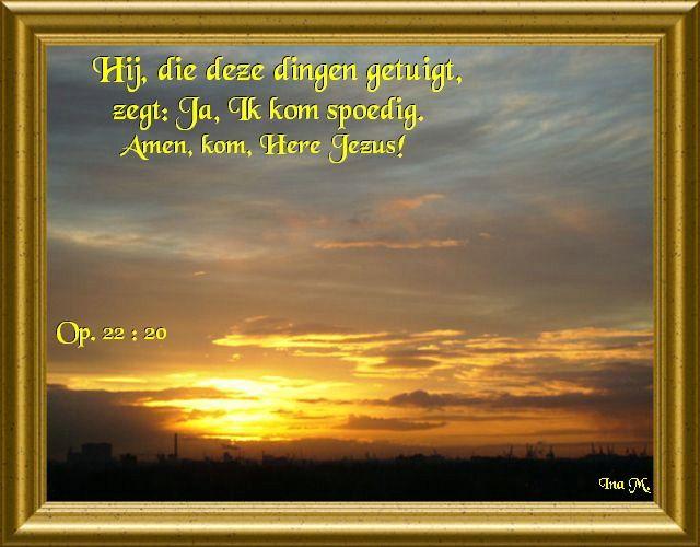 relatie en vriendschap 55 Middelburg