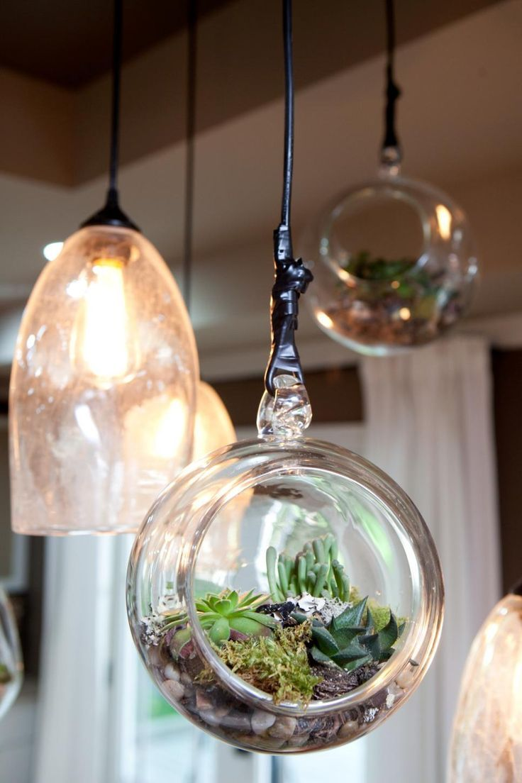 Absolutely Love This Indoor Plant Decor Idea! Plants/ Indoor Plants/ Indoor  Plant Decor