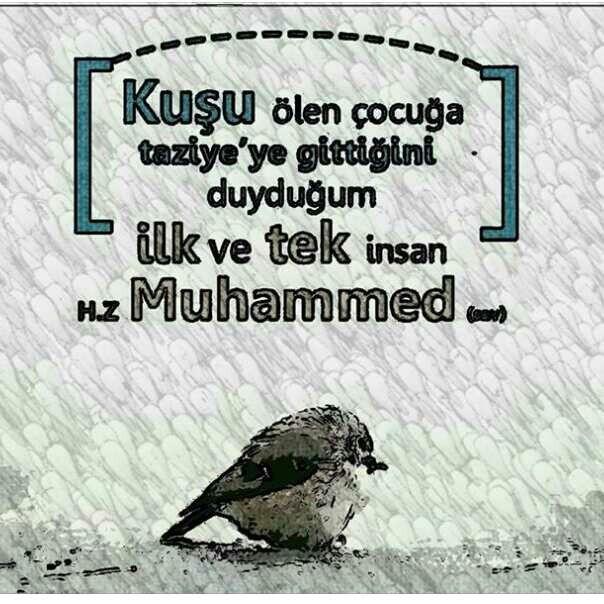 Allah ım Yarabbim