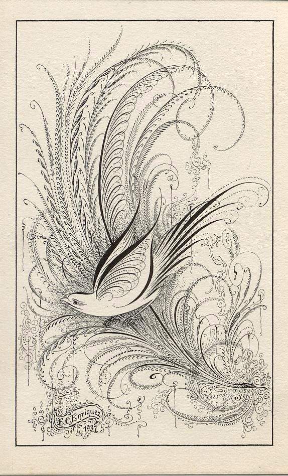 Style Spencerian Penmanship Lessons: 549 Best Calligraphic Drawings Images On Pinterest