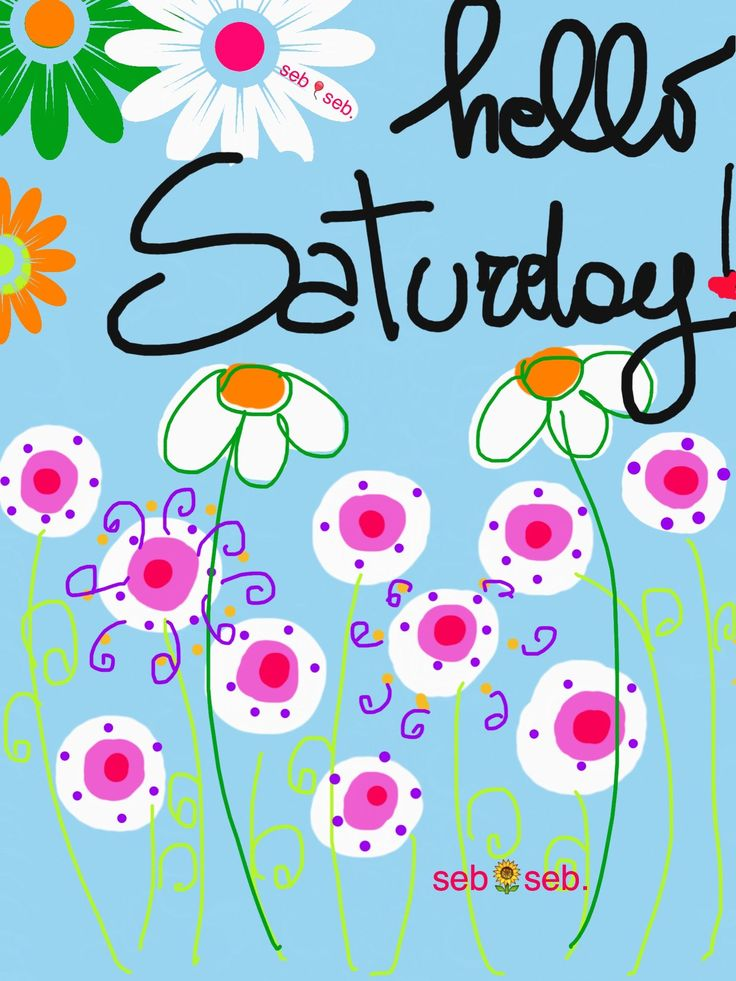 Hello Saturday!