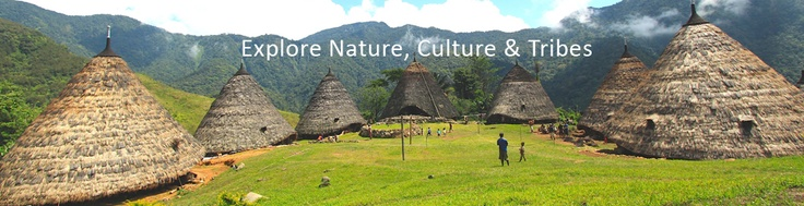 West Flores community based eco-tourism and sustainable tourism