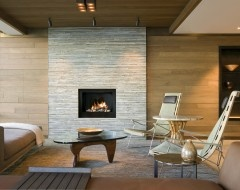 61 Best Fireplace Designs Images On Pinterest Fire