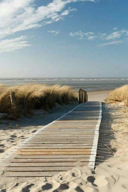 3e6e3a79d Pin by Jim Olson on Scenery & Serenity in 2019 | Beach, Ocean beach, Ocean