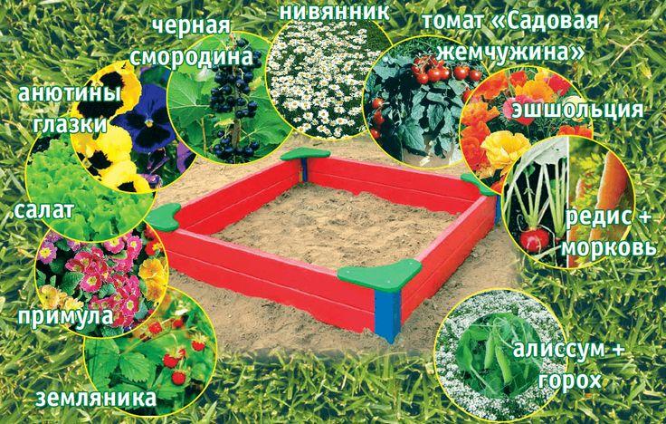 Как спланировать детский огородик? | Природное земледелие