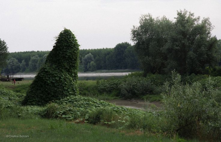River/1