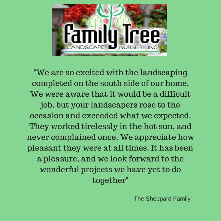 Family Tree Landscaping Nursery is a family you can trust. http://familytreensy.com/default.asp
