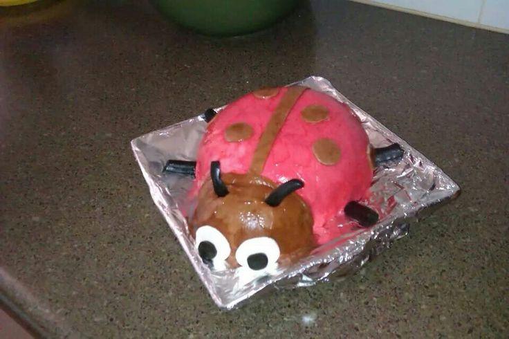 Georgie's 2nd - ladybird cake