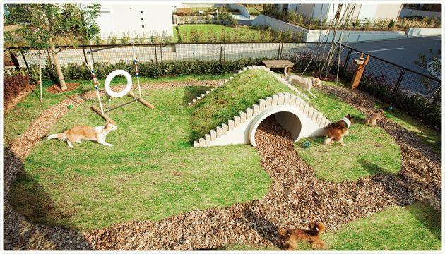 一緒に走って、遊んで。ドッグラン&ドッグガーデン!|with PET Lab|すまい・すまいる|積水ハウス