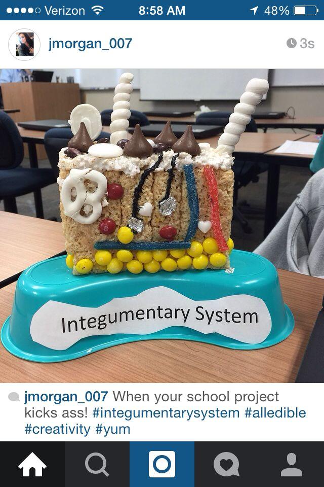26 best Integumentary System images on Pinterest | Anatomy, Nurses ...