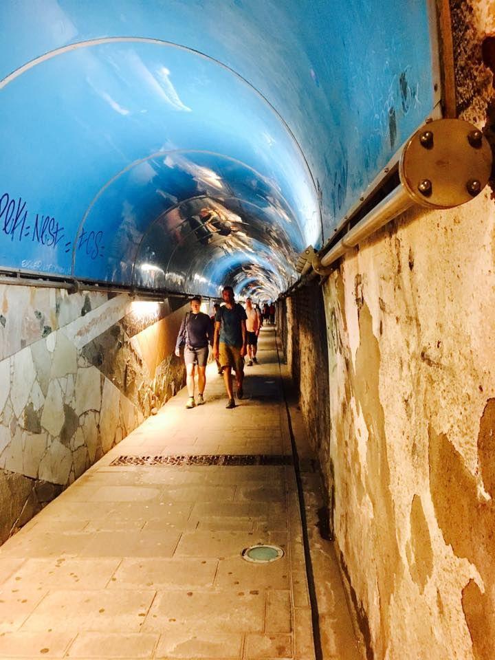 *****Great info! Tunnel to the train in Riomaggiore