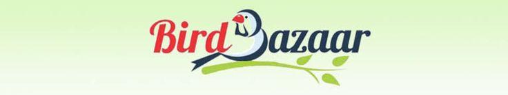 Bird Sex Determination - BirdBazaar.com