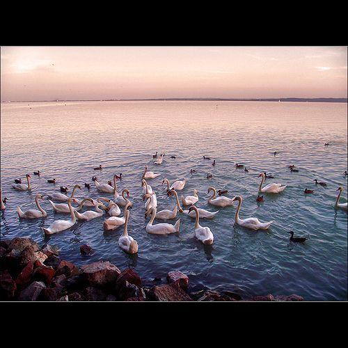 Lake Balaton, Balatonfüred, Hungary
