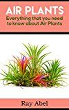 Free Kindle Book -   Air Plants: Everything that you need to know about Air Plants in a single book (air plants, air plant care, terrarium, air plant book)
