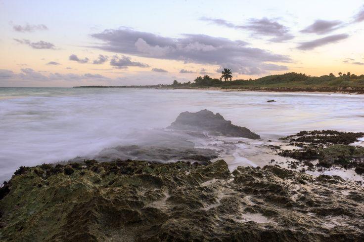 Sweet tides, January,2015