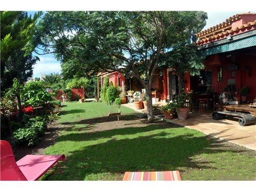 Jardín frondoso  #home #hogar #light #luminoso #sunny    #canarias #grancanaria #Tafira #alquiler #chaletenalquiler #vistas #views #garden #terraza #porche #jardin