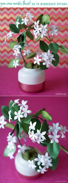 DIY Potted Paper Jasmine - www.LiaGriffith.com - #paperflowers #paperflower #paperjasmine #paperflowertutorial #DIyPaperFlower #HowTo #PaperPlant #PaperBotanical