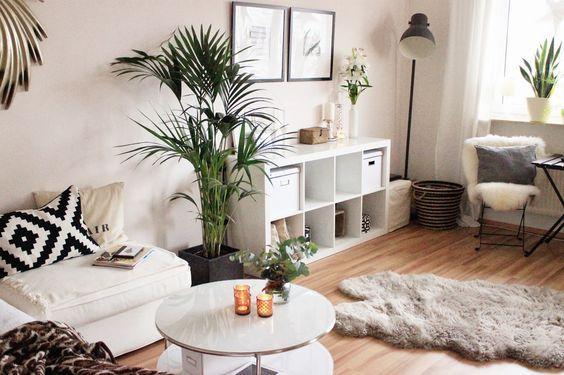 Super wohnlich, helle Couch, Expedit-Regal, Flauschteppich, Pflanzen, eventuell Creme/leichter Rosé Ton für die Wand