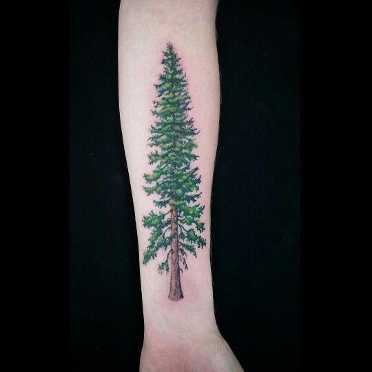 #pine #tattoo #ink #colorful #tattooed #tree