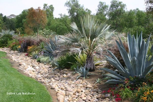 120 Best Dry Creek Beds Images On Pinterest - dry garden design brooke