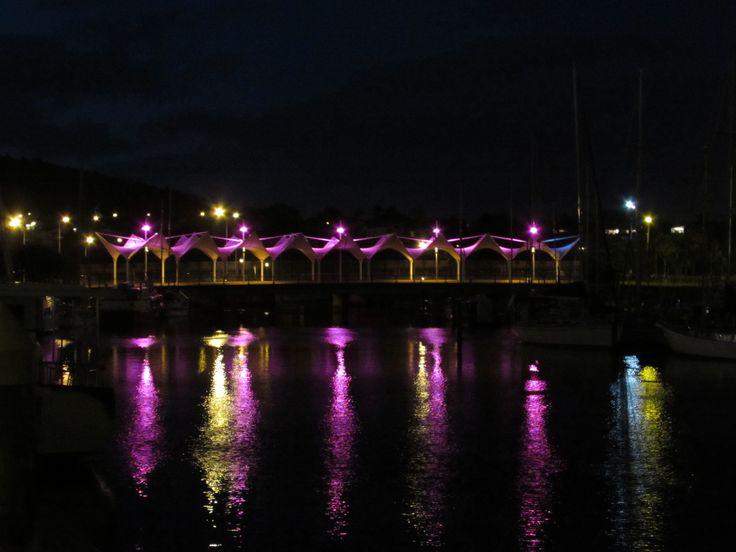 Whangarei Waterfront Canopy foot bridge New Zealand Photo by Sally Williams