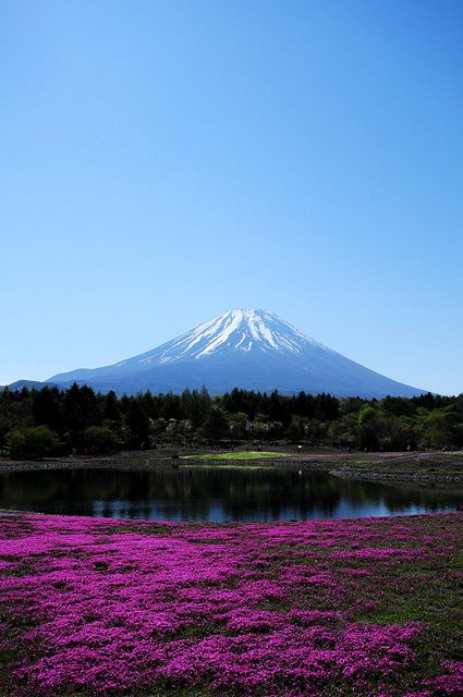 Mt.Fuji, Yamayashi, Japan