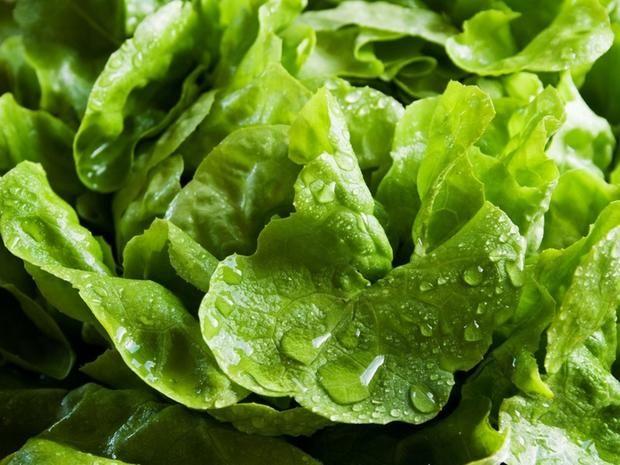 Wussten Sie, dass Sie Ihr Essen einfach nachwachsen lassen können? Das funktioniert bei vielen Gemüsesorten mit den Teilen, die auf dem Müll landen.