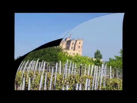 Wunder der Natur, Natur-Aufnahmen von Günter Fischer: Das Hambacher Schloss  von Alsterweiler aus  geseh...