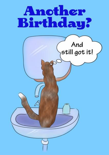 'Cat in the sink' - an illustrated #card featuring #CuteCat Chilli