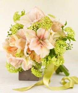 Amaryllis wedding bouquets - The Wedding Specialists