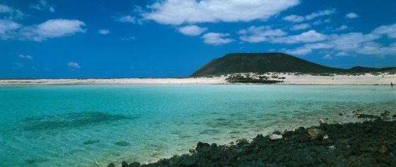 Next trip!! Five Things to Do in Fuerteventura