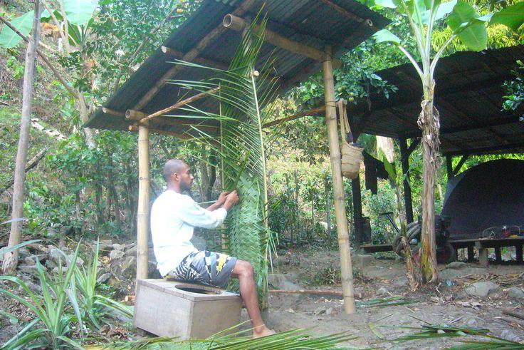 en la busqueda constante por la armonía con la naturaleza, me encontre con esta tecnica indigena de tejido de palma de coco, para la realización de las paredes de un baño seco