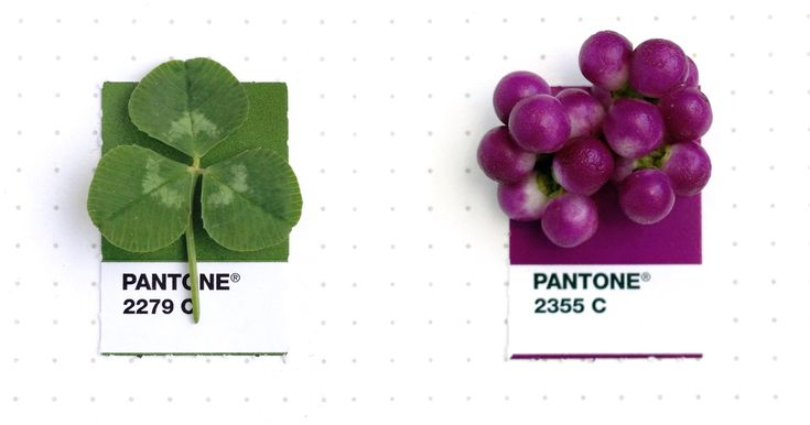 Designer Pairs Pantone Swatches With Tiny Everyday Objects | Bored Panda