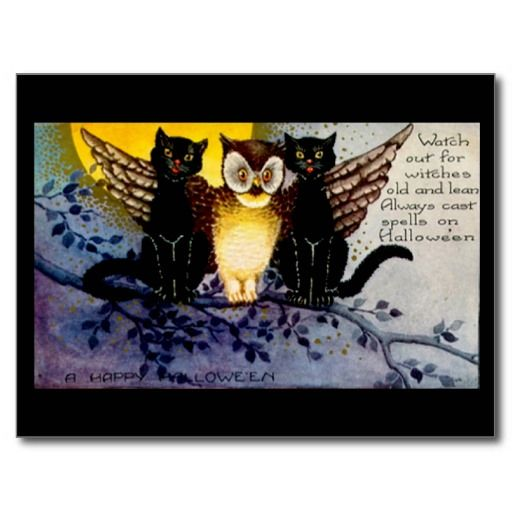 Halloween Owl and Black Cats