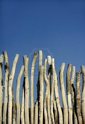 Houten wand gemaakt van natuurlijke ronde gestreepte hout boomstammen, blauwe hemel zomer Stockfoto
