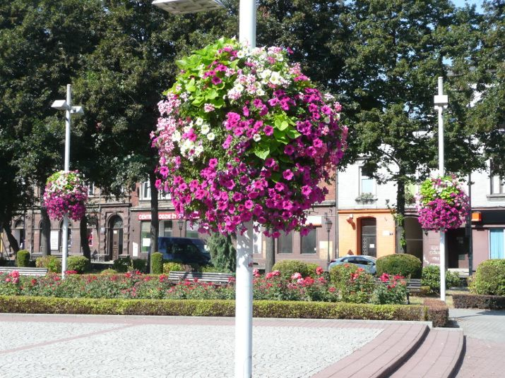 flower boxes for city lanterns Jiflor
