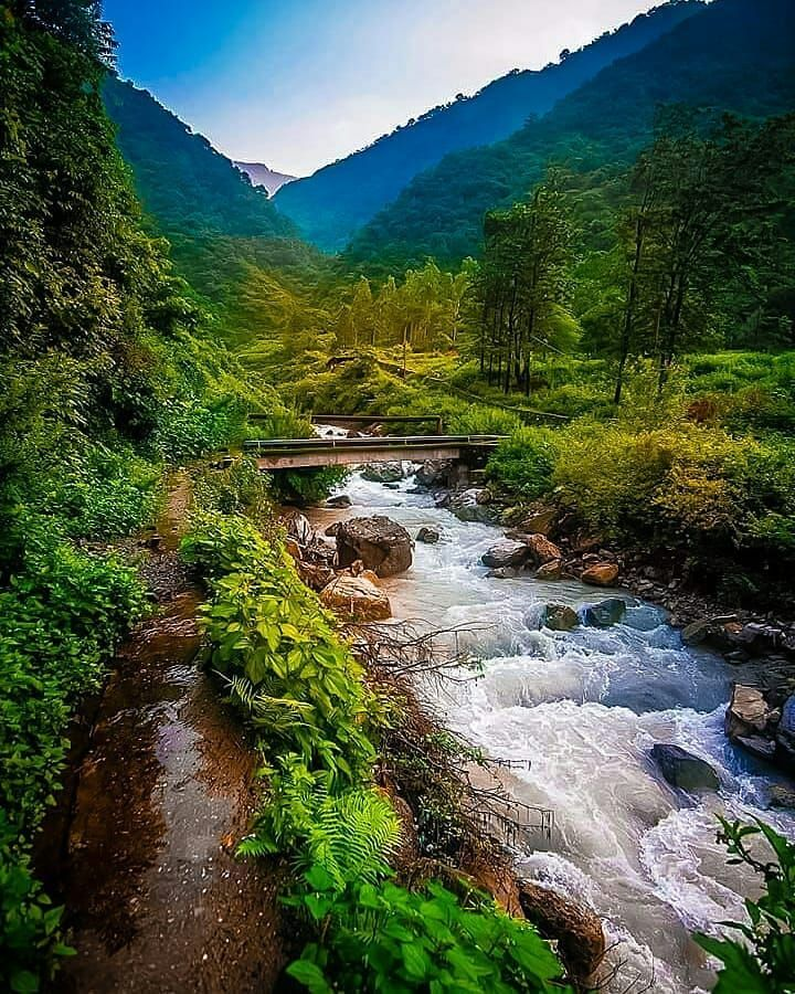 Dehradun stream
