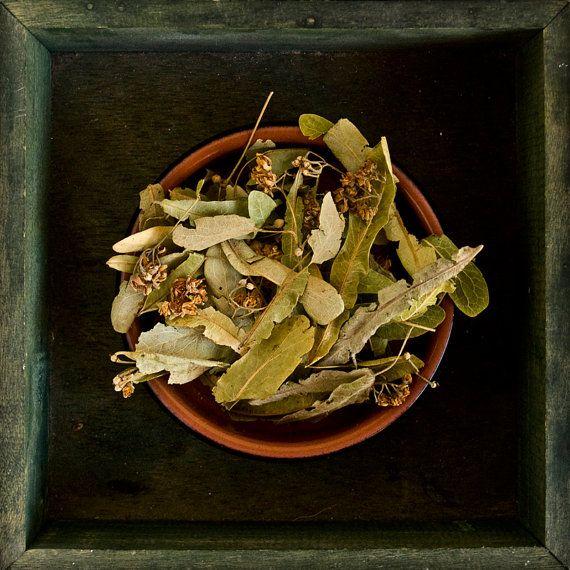 Linden Tea of Crete  Dried Herb from Crete Greece by matzouni, $3.99