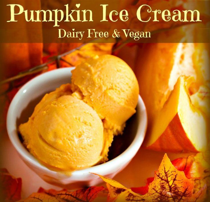 Coconut Milk Pumpkin Ice Cream (Dairy Free & Vegan)