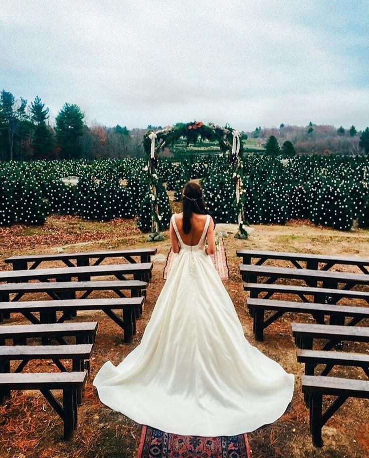 Sarah Vickers wedding