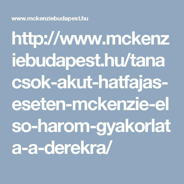 http://www.mckenziebudapest.hu/tanacsok-akut-hatfajas-eseten-mckenzie-elso-harom-gyakorlata-a-derekra/