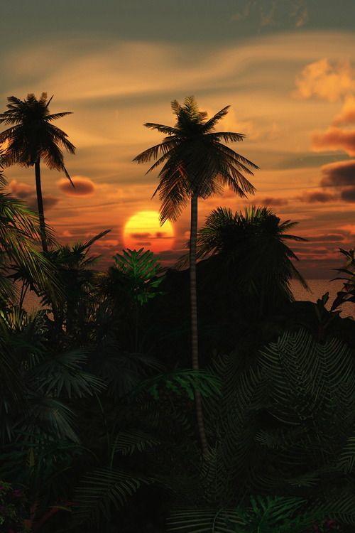 Sunrise....sunset....Tumblr