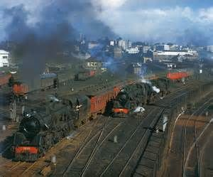 1950s steam trains auckland new zealand - Bing images