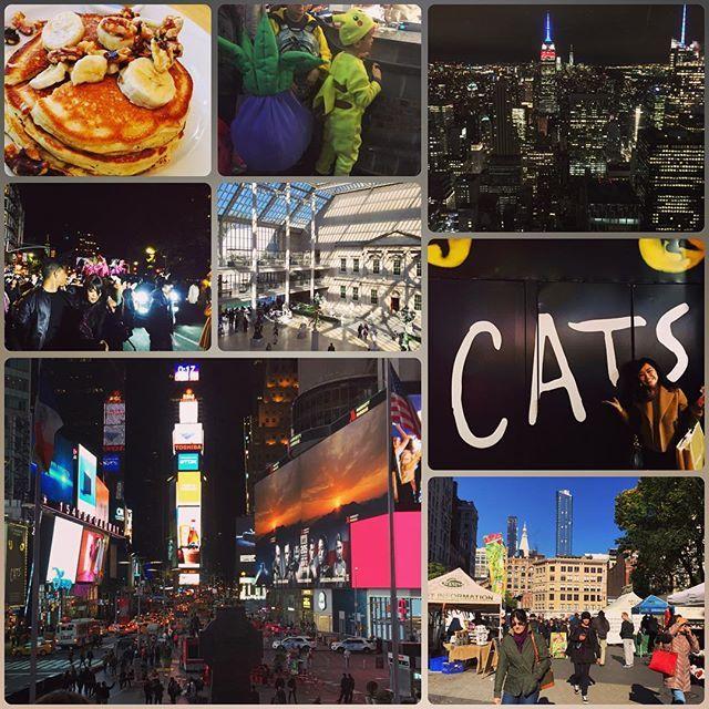 Instagram【yukapin66】さんの写真をピンしています。 《無事帰国! NY後半戦まとめ♡とにかくフルコースな8日間! #ニューヨーク #NY #メトロポリタン美術館 #広すぎ #MET #グリーンマーケット #市場 #SOHO #ハロウィンパレード #本番 #参加したら本当に楽しかった #ニューヨーク大学 #NYU #5番街 #変な占い師に捕まる #怖かった #cats #broadway #最高 #ジェリクルキャッツ #ロックフェラーセンター #topoftherock #夜景 #timessquare #帰りの飛行機は9時間は寝た》
