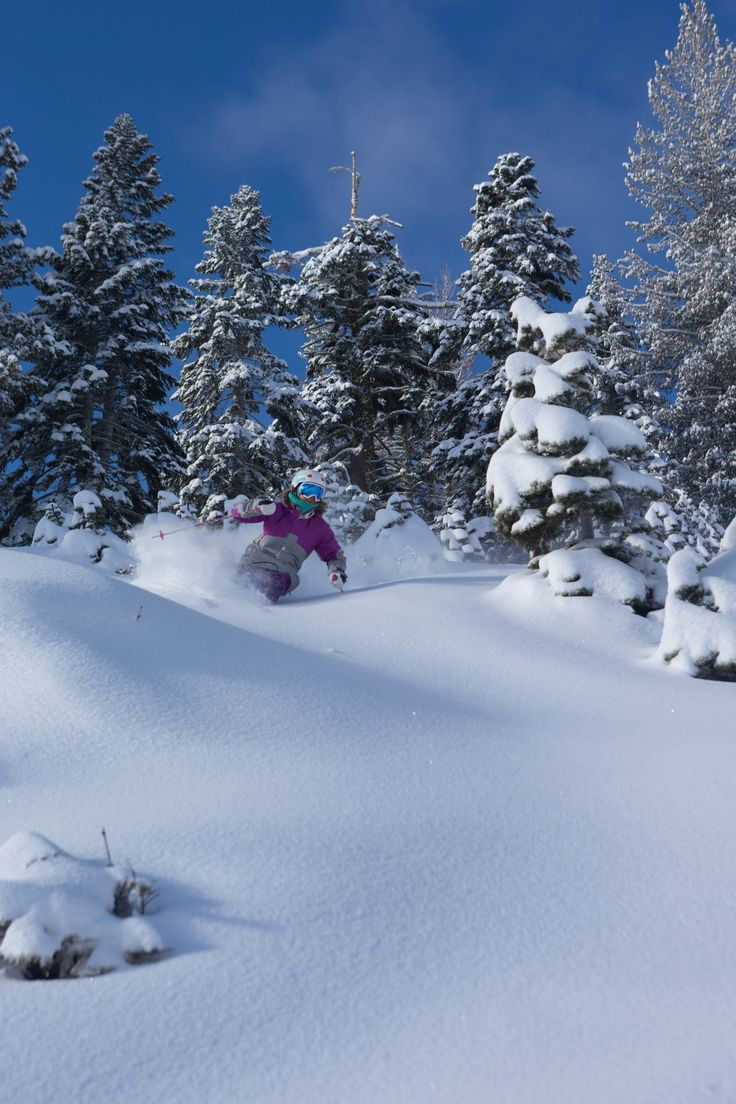 "10"" New Snow!! Squaw Valley & Alpine Meadows 1/31/14"