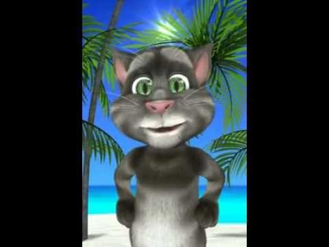 Chiste Del Canguro Con El Gato Tom