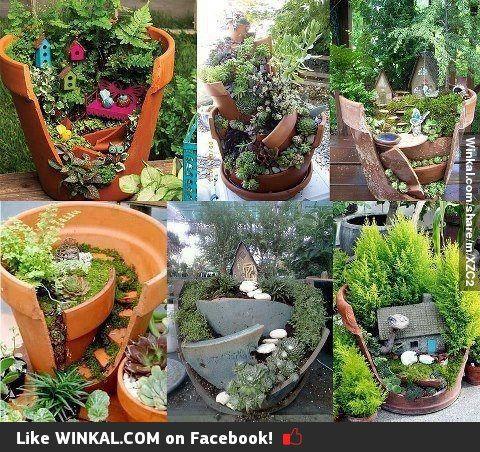 Se te rompi una maceta no la botes mira lo que puedes for Crear un jardin paisajistico