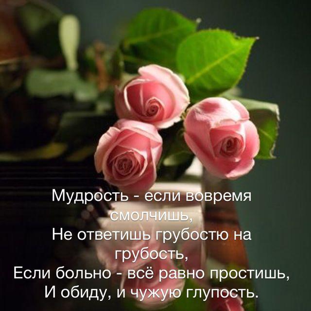 Russische Sprüche, Gedanken, Zitat, Ideen, Bibelverse, Inspirierende  Zitate, Russland, Spirituell
